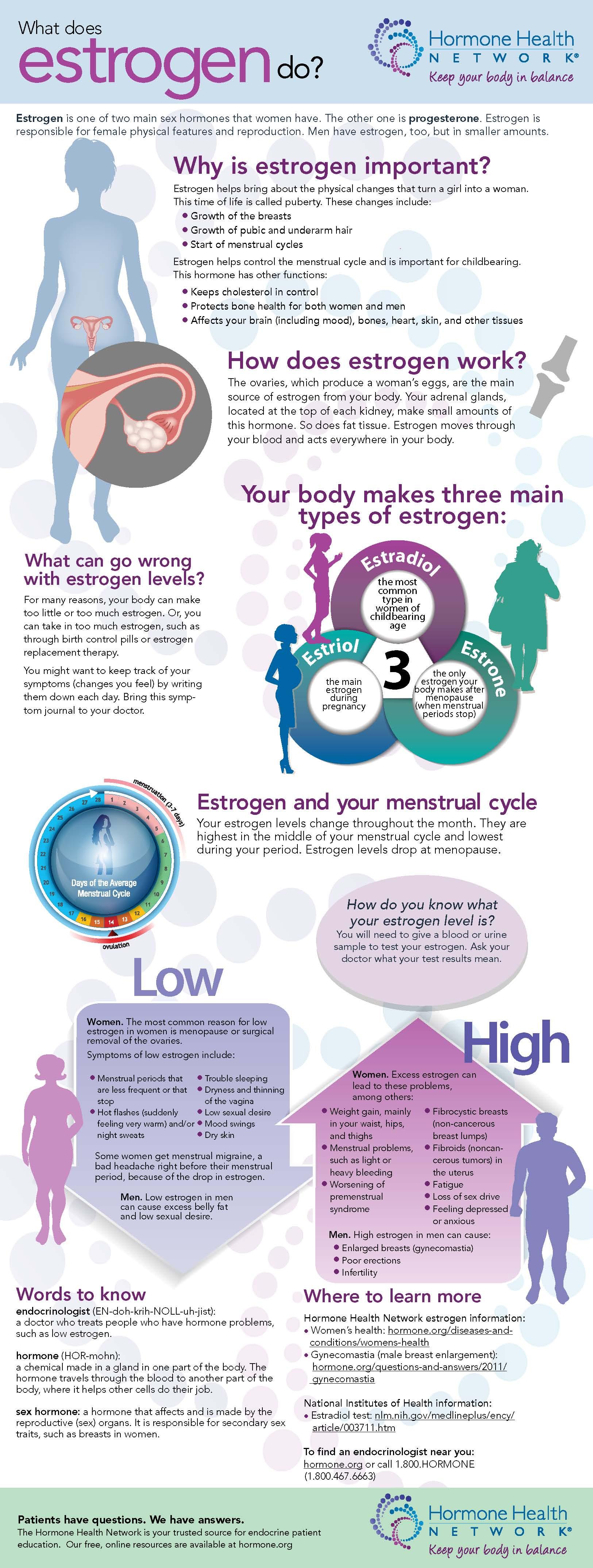 infographic_estrogen_webvertical (1)